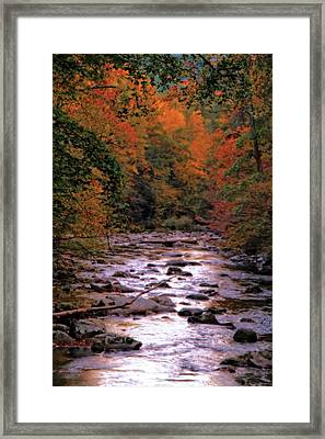 Little River In Autumn Framed Print by Dan Sproul