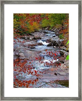 Little River Framed Print
