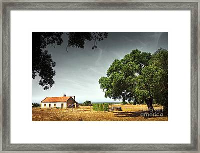 Little Rural House Framed Print by Carlos Caetano
