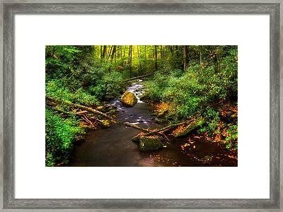 Little Santeetlah Creek Framed Print