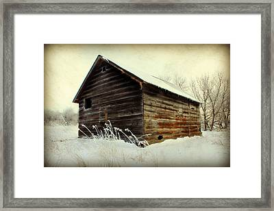 Little Shed Framed Print by Julie Hamilton