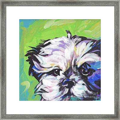 Little Shitz Framed Print by Lea S