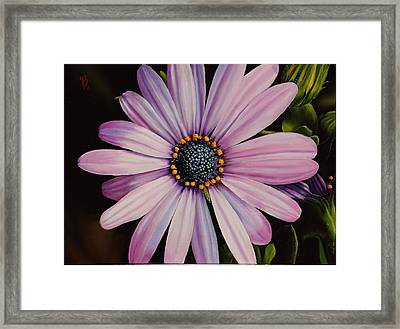 Little Showoff Framed Print