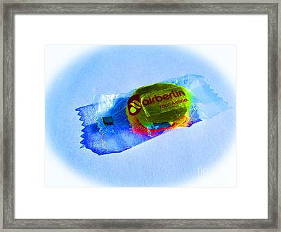 Little Things Mean A Lot Framed Print by Tina M Wenger