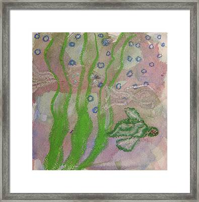 Little Turtle Finding His Way Framed Print by Claudia Smaletz