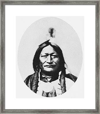 Little Wolf Framed Print by Granger
