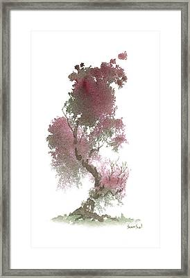 Little Zen Tree 1117 Framed Print by Sean Seal