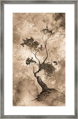 Little Zen Tree 873 Altered Framed Print by Sean Seal