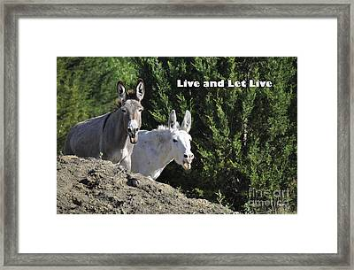 Live And Let Live Framed Print by Cheryl McClure