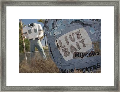 Live Bait And The Man Framed Print