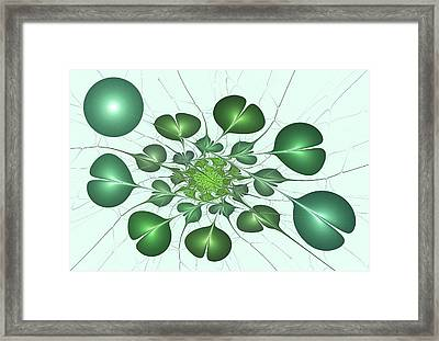 Live In Clover Framed Print