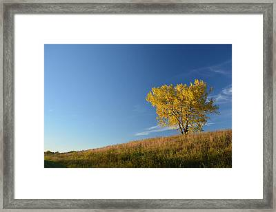 Live In The Prairie Framed Print by Jesse Olson