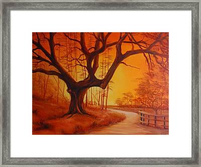 Live Oak At Sunset Framed Print by Rich Kuhn