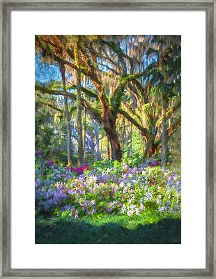 Live Oaks And Azaleas Painted  Framed Print by Rich Franco