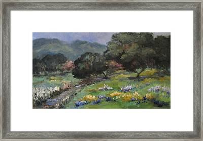 Live Oaks And Wildflowers Framed Print