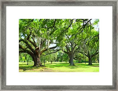 Live Oaks - Audubon Park New Orleeans Framed Print