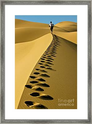Live On The Edge Framed Print by Michael Cinnamond