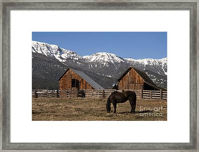 Livestock Horse Grazing Natural Wood Barn Mountain Ranch Winter Framed Print by Christopher Boswell
