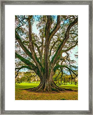 Living Art - Paint Framed Print by Steve Harrington