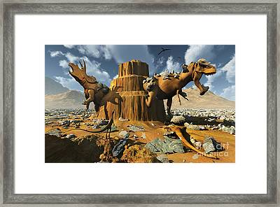 Living Fossils In A Desert Landscape Framed Print by Mark Stevenson