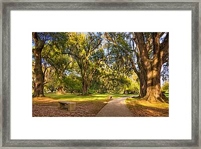 Living History 3 - Paint Framed Print by Steve Harrington