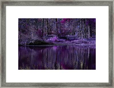 Living In A Purple Dream Framed Print by Linda Unger