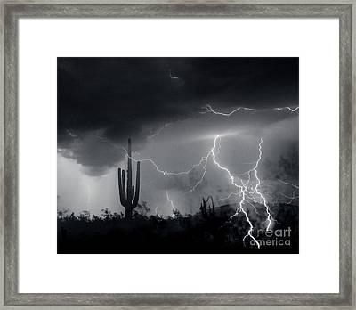 Framed Print featuring the photograph Living In Fear by J L Woody Wooden