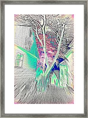Living In The Big City Close To This Tree  Framed Print