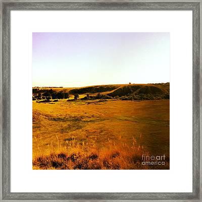 Living Land Framed Print by Kurtis McDonald