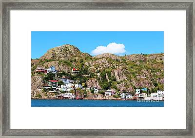 Living On The Edge Framed Print by Barbara Griffin