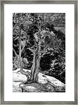Living On The Edge In Black And White Framed Print by Lee Craig