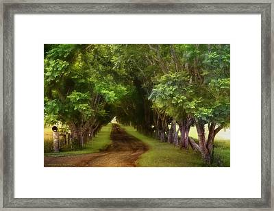 Living On The Land 01 Framed Print