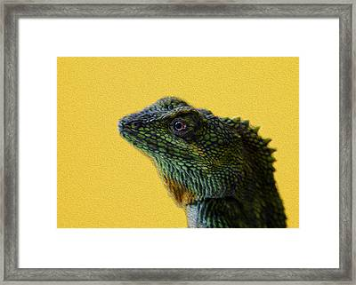 Lizard Framed Print by Karen Walzer
