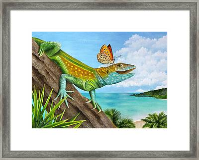 Lizard Landing Framed Print by Carolyn Steele