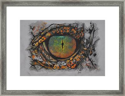 Lizards Eye Framed Print