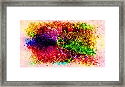 Lizard In Abstract Framed Print