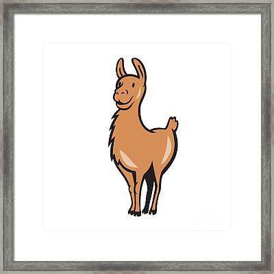 Llama Cartoon Framed Print by Aloysius Patrimonio