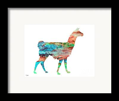 Llama Framed Prints