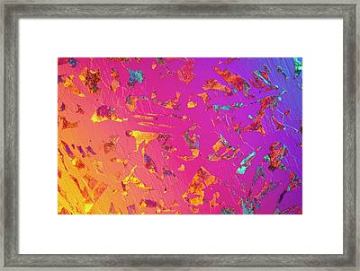 Lm Of C35 Steel In Thin Section Framed Print by Astrid & Hanns-frieder Michler/science Photo Library
