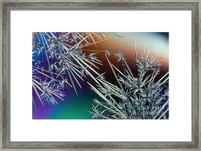 Lm Of Crystals Of Antibiotic Framed Print
