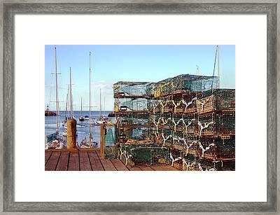 Lobstah Traps Framed Print by Joann Vitali