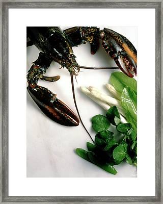Lobster, Asparagus, Sorrel, Watercress, Mangetout Framed Print