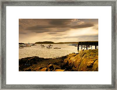 Lobster Boats Cape Porpoise Maine Framed Print by Bob Orsillo