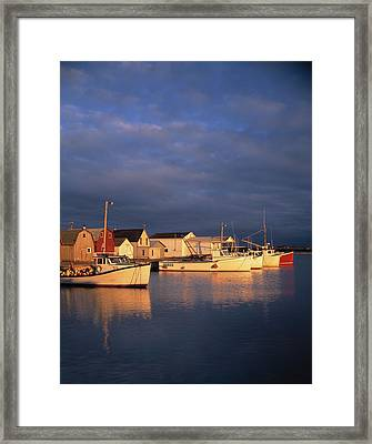Lobster Boats Tied Up On Prince Edward Framed Print by Panoramic Images