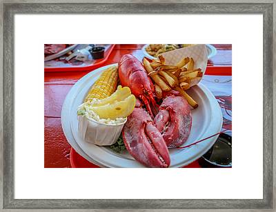 Framed Print featuring the photograph Lobster Dinner  by Trace Kittrell
