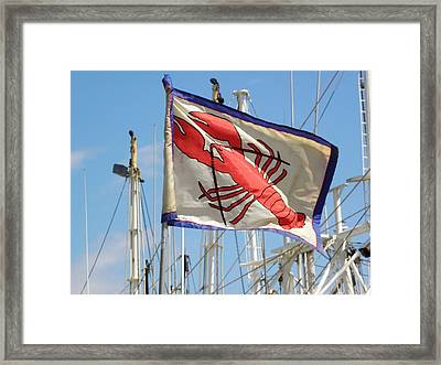 Lobster Flag At The Point Framed Print by Mary Carol Williams