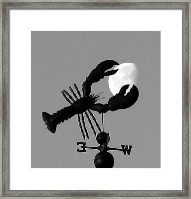 Lobster Over The Moon Framed Print by Donnie Freeman