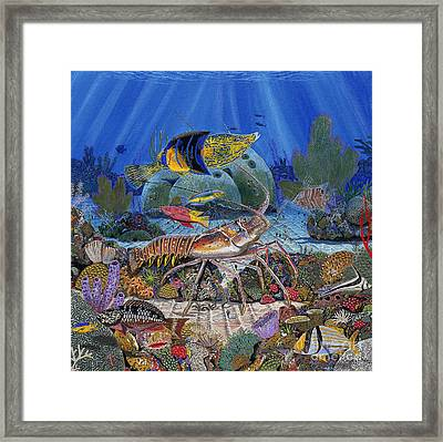 Lobster Sanctuary Re0016 Framed Print by Carey Chen