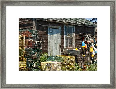 Lobster Shack Framed Print by Juli Scalzi