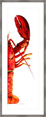 Lobster - The Right Side Framed Print by Sharon Cummings